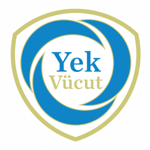 Yekvücut