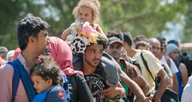 Danimarka suriyeli mülteciler