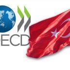 OECD Türkiye büyüme tahminini yükseltti